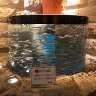福岡市中央区天神(福岡県)周辺の魚料理に関する店 …