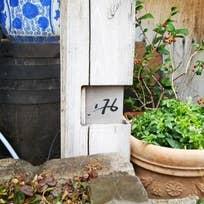 176 (練馬)_そば(蕎麦)_10109739