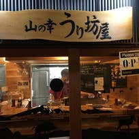 山の幸 うり坊屋(朝日町)_居酒屋_13456045
