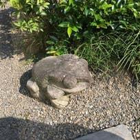 カフェ井政(外神田)_カフェ_7232334