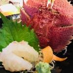 長崎DINING 多ら福 亜紗_16604298