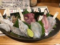 魚男 フィッシュマン_17388769