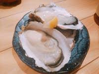 魚の蔵_18089691