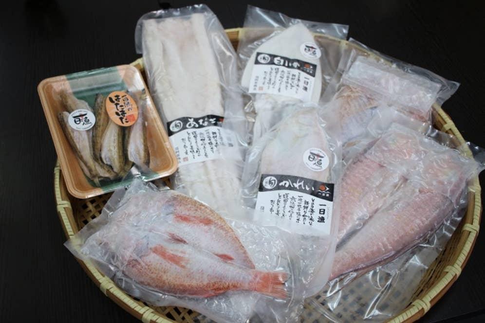 岡富商店で人気の干物たち