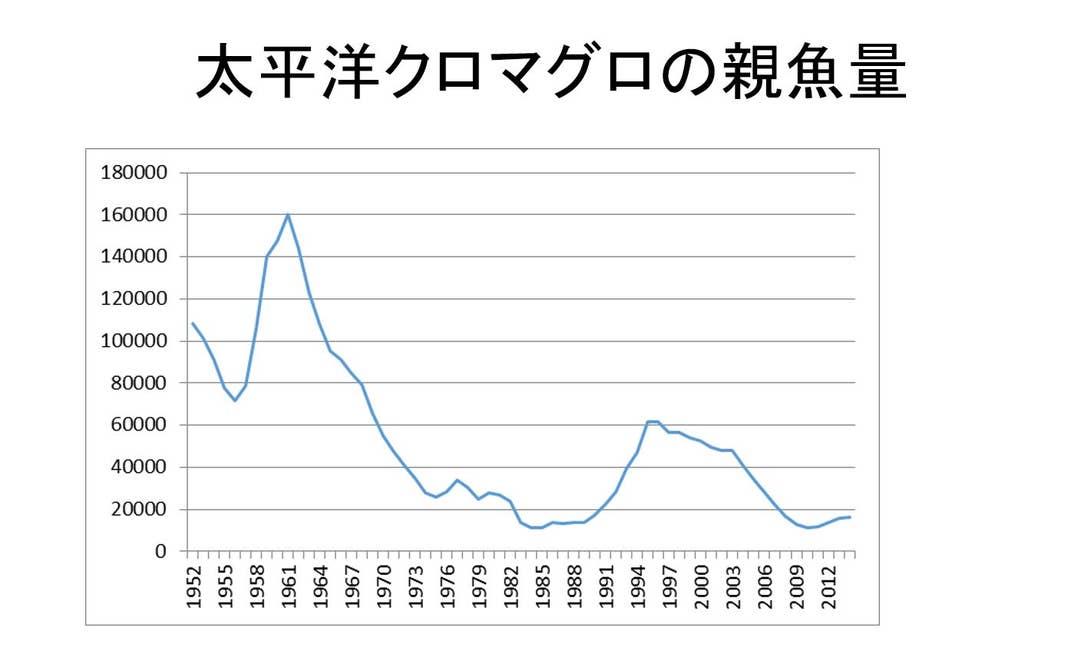 太平洋クロマグロの卵を産む親の量。1990年頃にベビーブームが起きて一時回復するも、その後再び減少。【出典元:ISC 2016】